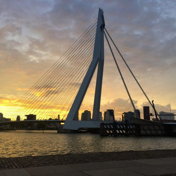 Erasmusbrücke in Rotterdam bei Sonnenuntergang