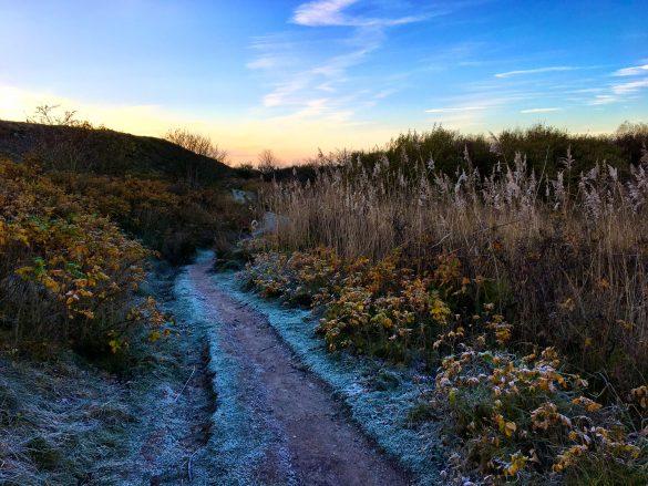 Wanderweg am Morsumer Kliff auf Sylt