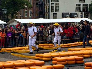 Käsetrager (kaasdragers) auf dem Käsemarkt in Alkmaar