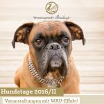 Plakat der Sylter Hundstage November 2016