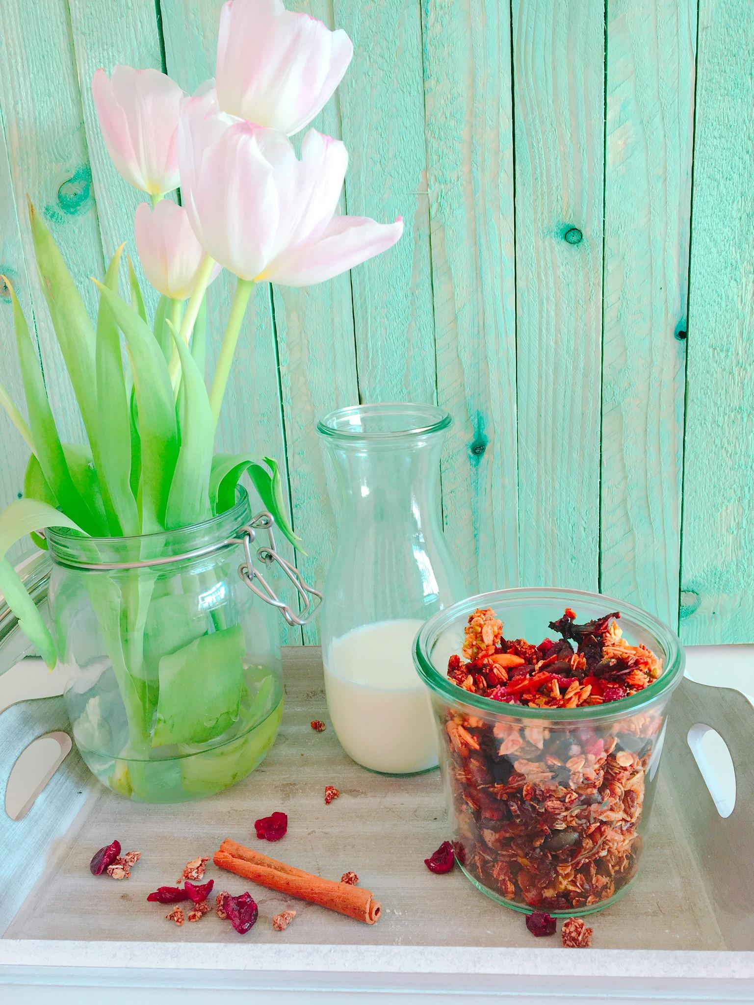 Zuckerfreies Granola mit Cranberrys und Pistazien