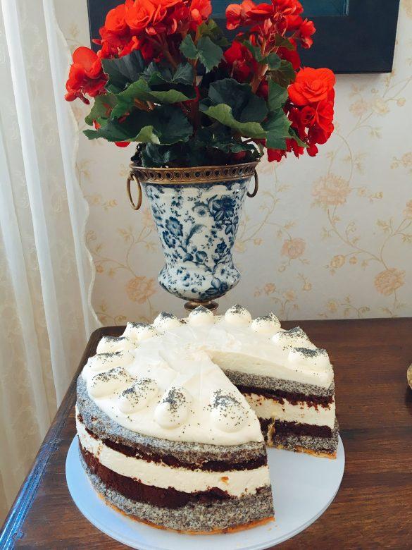Mohn-Aprikosen-Torte im Cafe Froschkönig auf Rügen
