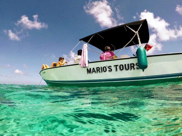 Schnorcheltrip mit Mario Tours auf Caye Caulker