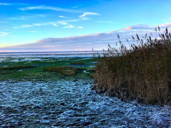 Eisschicht am Morsumer Kliff auf Sylt