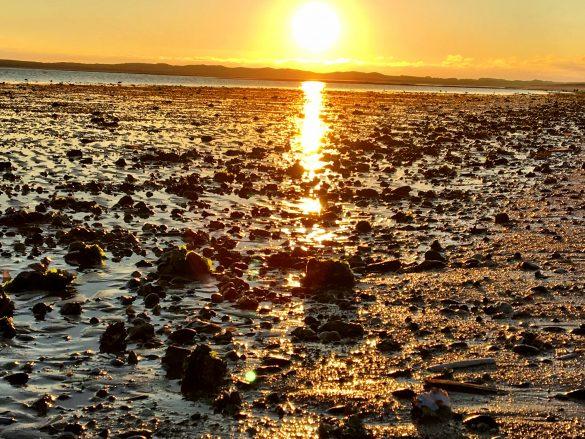 Sonnenuntergang an der Sylter Ellenbogenspitze