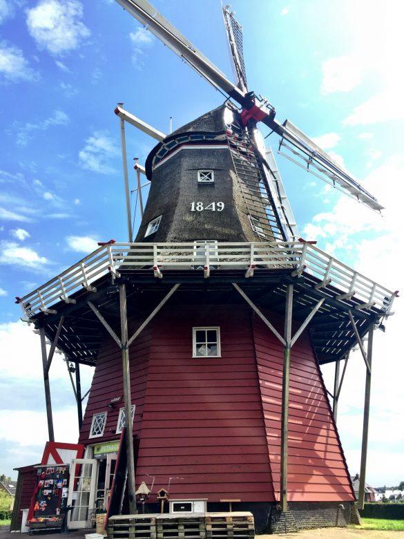 Windmühle mit einem Shop für Haustierbedarf