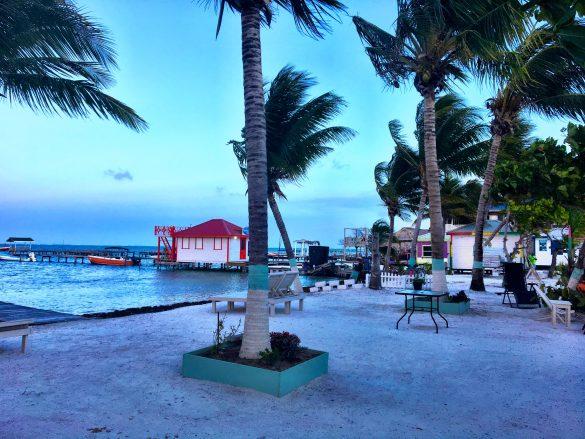 Palmen gesäumte Hauptstraße auf Caye Caulker