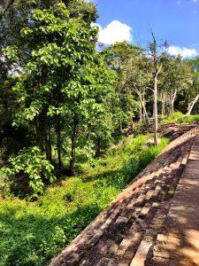 Rigitala Ruinen im Dschungel